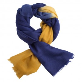 Shaded pashmina shawl in navy and golden