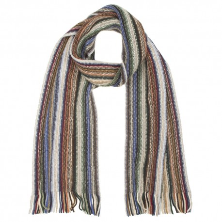 Striped multi coloured scarf